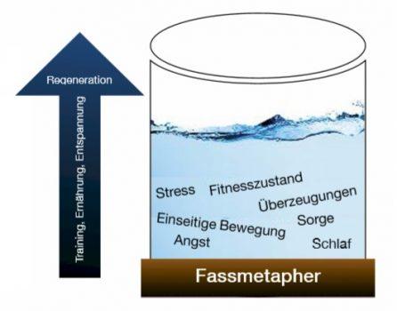 fassmetapher-2